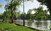 Parque CISMIGIU Bucarest